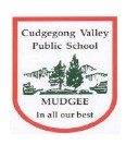 Cudgegong Valley Public School - Education NSW